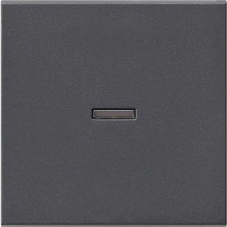 Gira | Enkele schakelwip met controlevenster | Systeem 55 ANTR | 029028