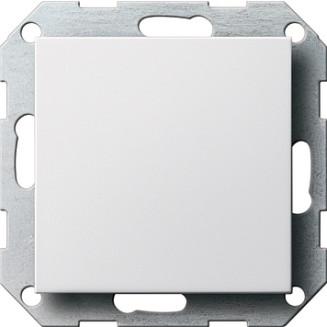 Gira   blindplaat   standaard 55 ZWG