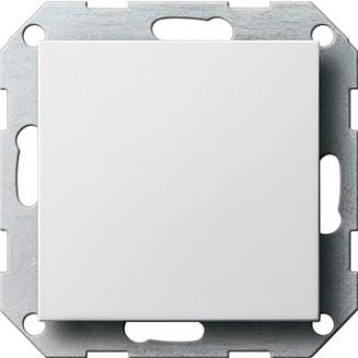 Gira   blindplaat   standaard 55 ZWM